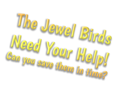 Help the Jewel Birds!