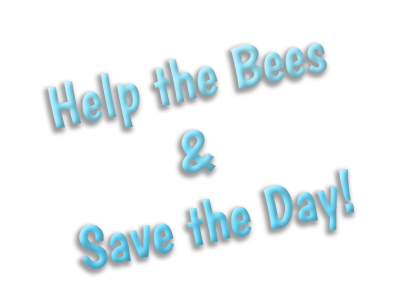 Help the Bees & Save the Day!